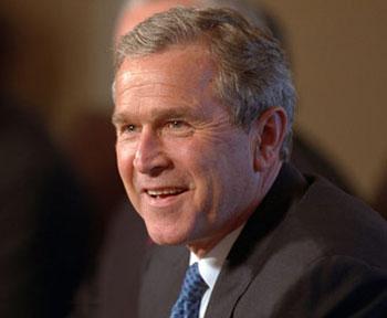 Bush-11.jpg